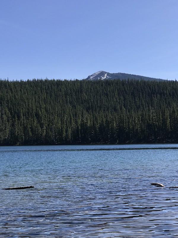 Waldo lake October