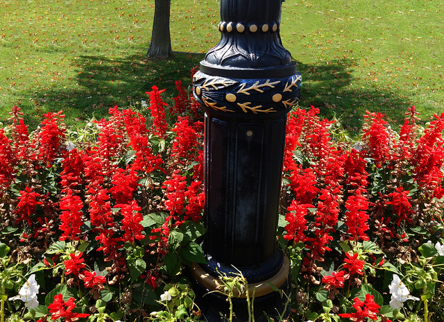 Park Light With Flowers