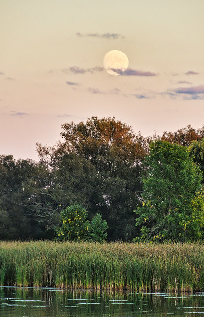 Autumnal Moon Rise over the Creek
