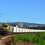 Continental Rail 335.022