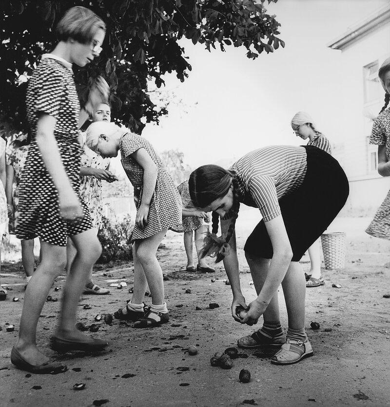 1962. Школа для слепых детей. Каштаны. Каунас