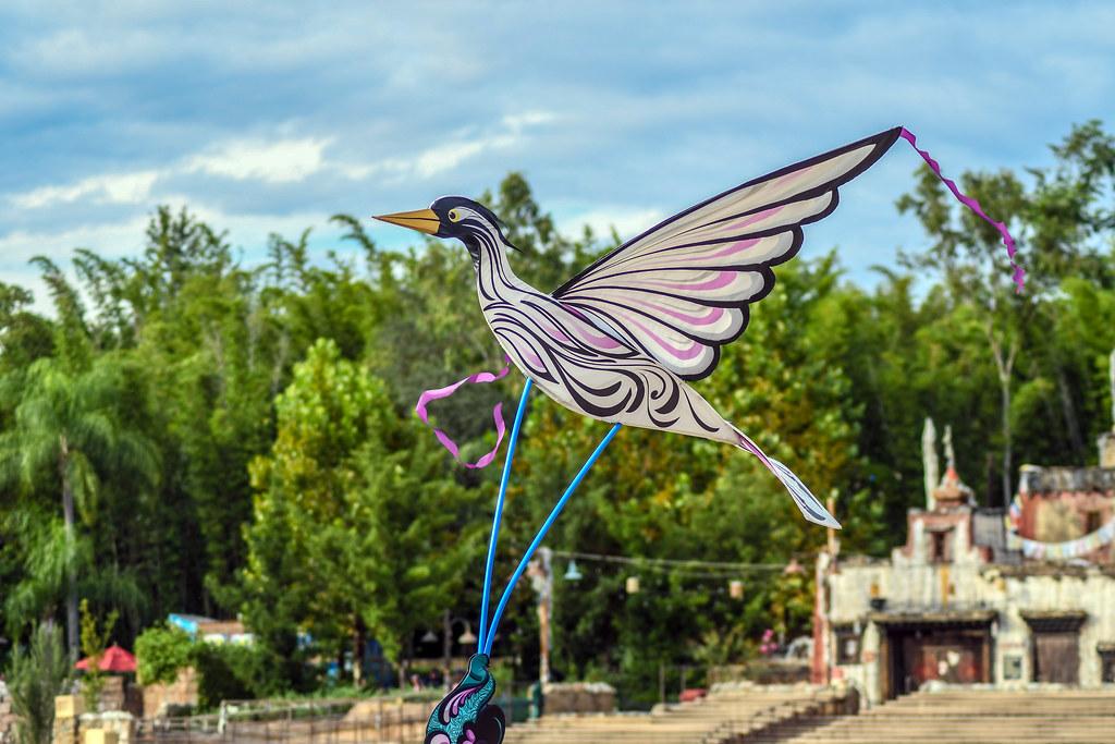 KiteTails Bird AK