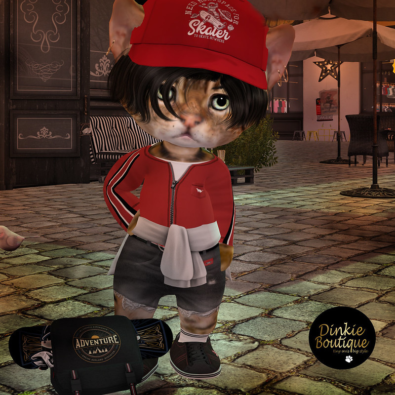 """Fresh from IOW Fashion Show Six new Autumn Looks for Dinkie Girls and the Guys  Complete outfits available at Petite Village Market 🙂  <a href=""""http://maps.secondlife.com/secondlife/Dizza/102/212/21"""" rel=""""noreferrer nofollow"""">maps.secondlife.com/secondlife/Dizza/102/212/21</a>"""