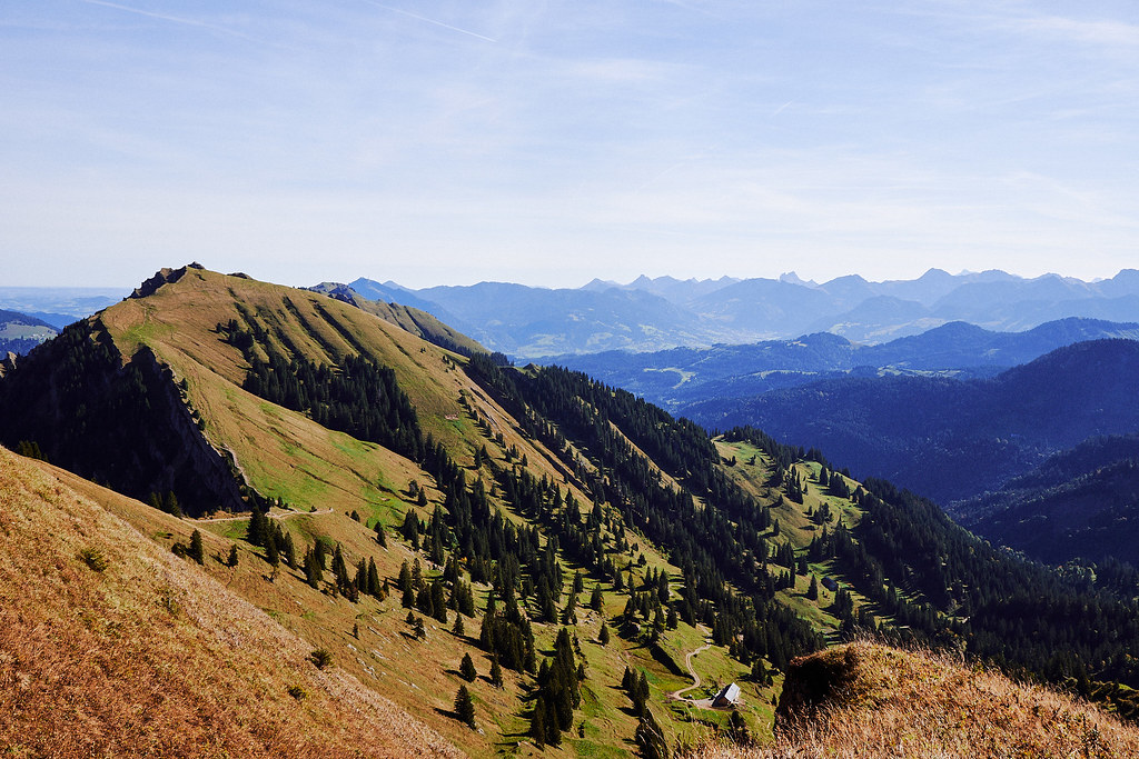 Foreground shows a green (grass) mountain ridge with a couple of trees and a small hut further down. The background is the silhouette of the Alps (German side). The picture itself was taken on a mountain looking at the german / austrian alps.