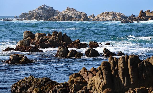 California Coast near Pacific Grove, August 2021 (explored)