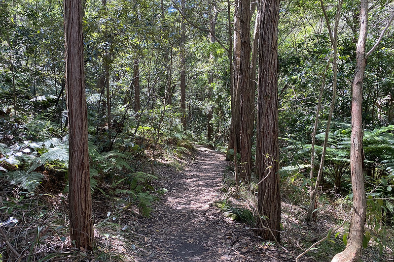 Tannery Creek Walk