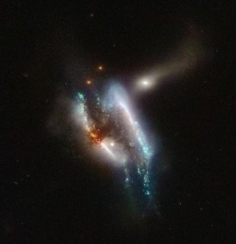 IC 2431