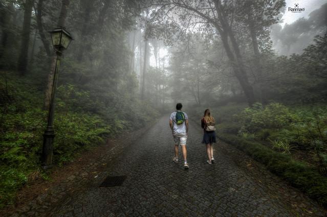 Hay un poco de niebla, pero no me esconderé tras ella. No... nunca más...