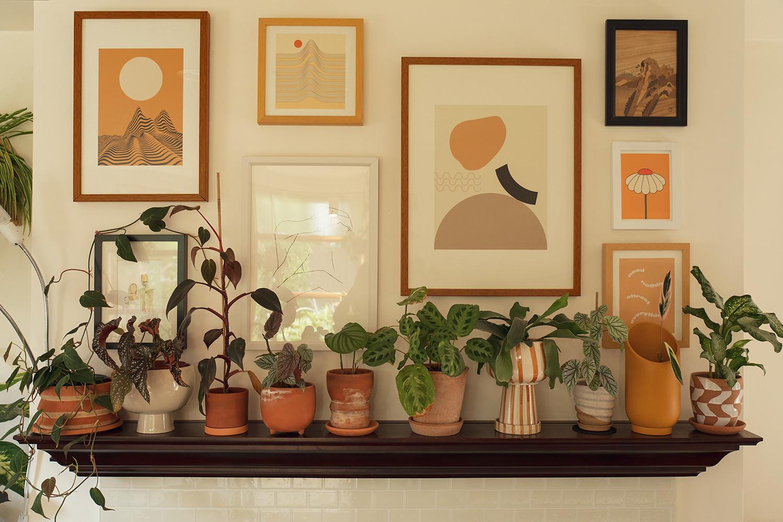 15-homedecor-houseplants-planttour-ceramics-planters