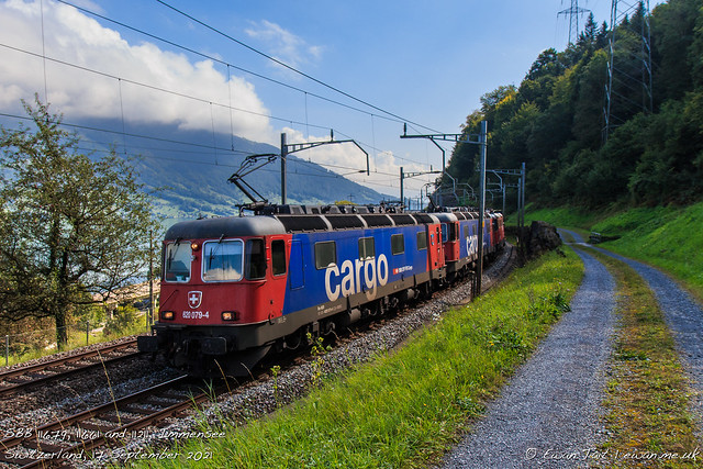 SBB 11679, 11661 and 11211, Immensee