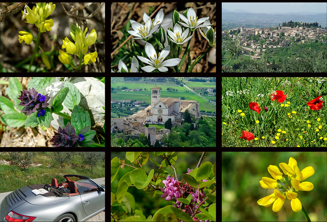 Frühling in Assisi