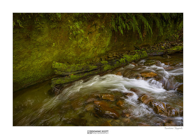 Ruahine Rapids