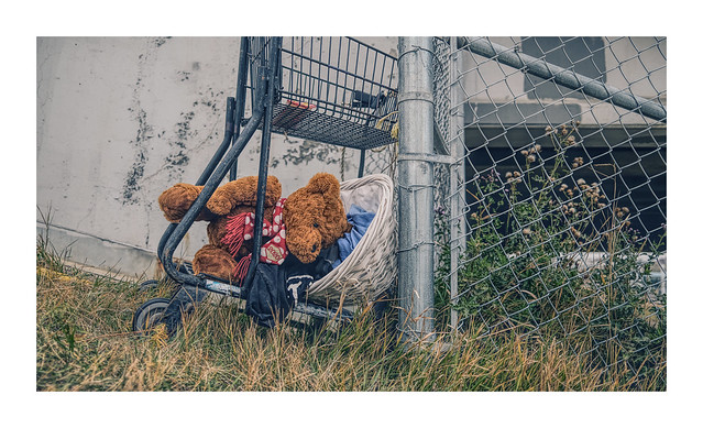 ... homeless teddy ...