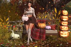 Fall Moments