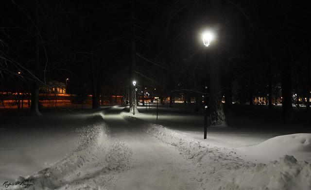 Uppsala in winter