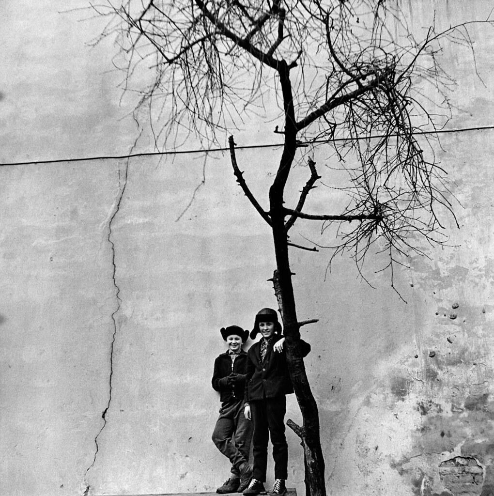 1965. Вильнюс. Стена. Мальчики под деревом