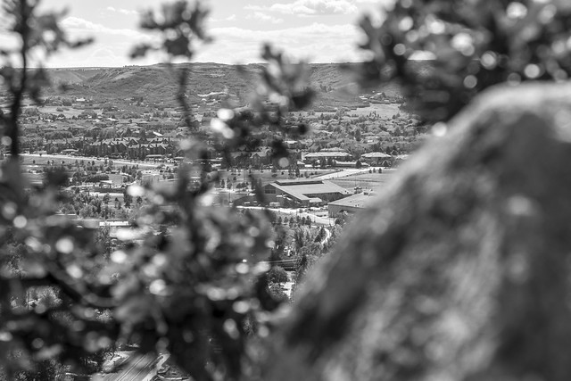 LANFEST Colorado - 150