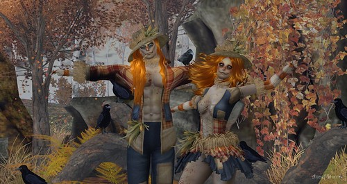 Virtual Trends:  Scarecrows