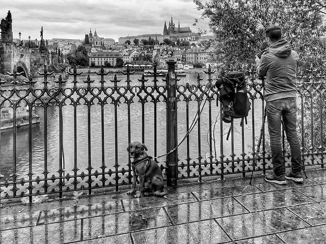 Photographer and his dog