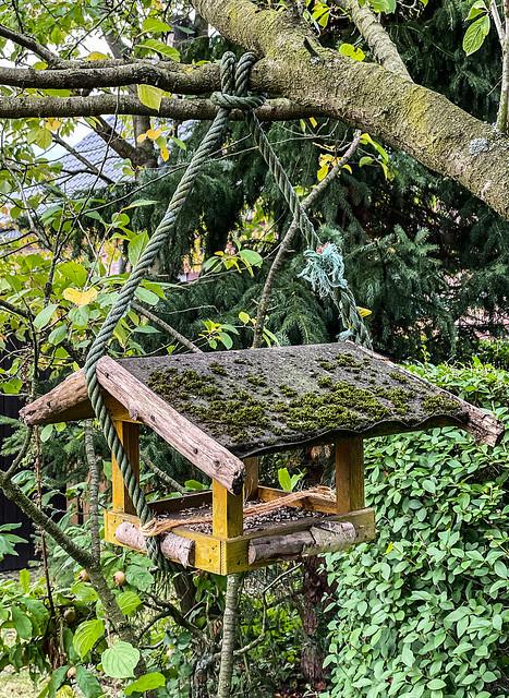 Schöner Garten 151---
