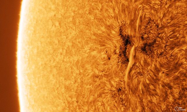 Solar Chromosphere and Filament