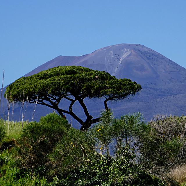 il Vesuvio, da Pompei