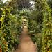 September in Lynmar Estate Winery
