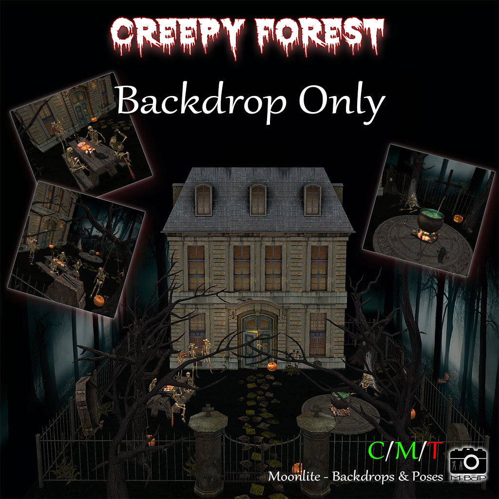 Creepy Forest – Backdrop Only