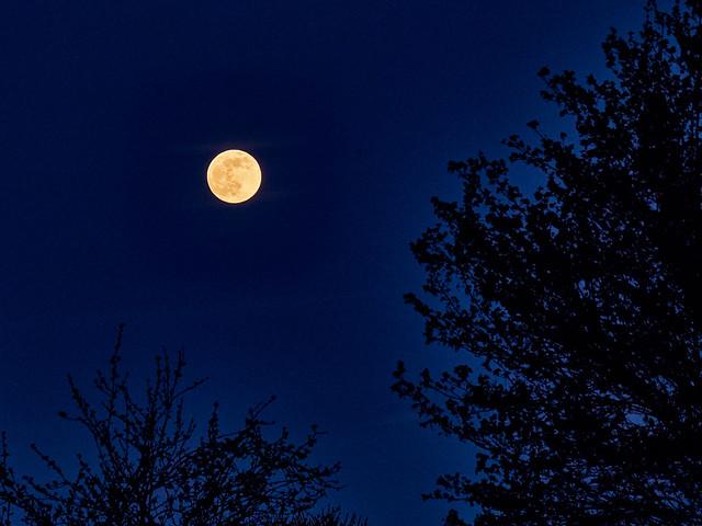 """A while ago: """"Super Moon"""""""