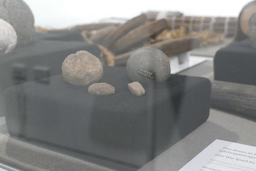 Whakaata mai te Kūkūwai – Reflections from the Wetlands exhibition