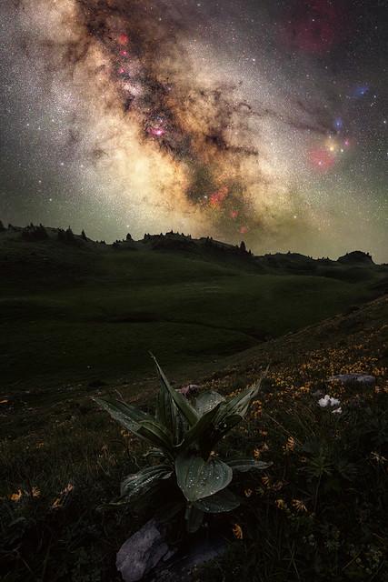 Un grain de poussière dans l'Univers