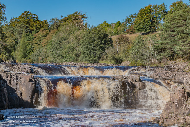 Low Force Oct 2021