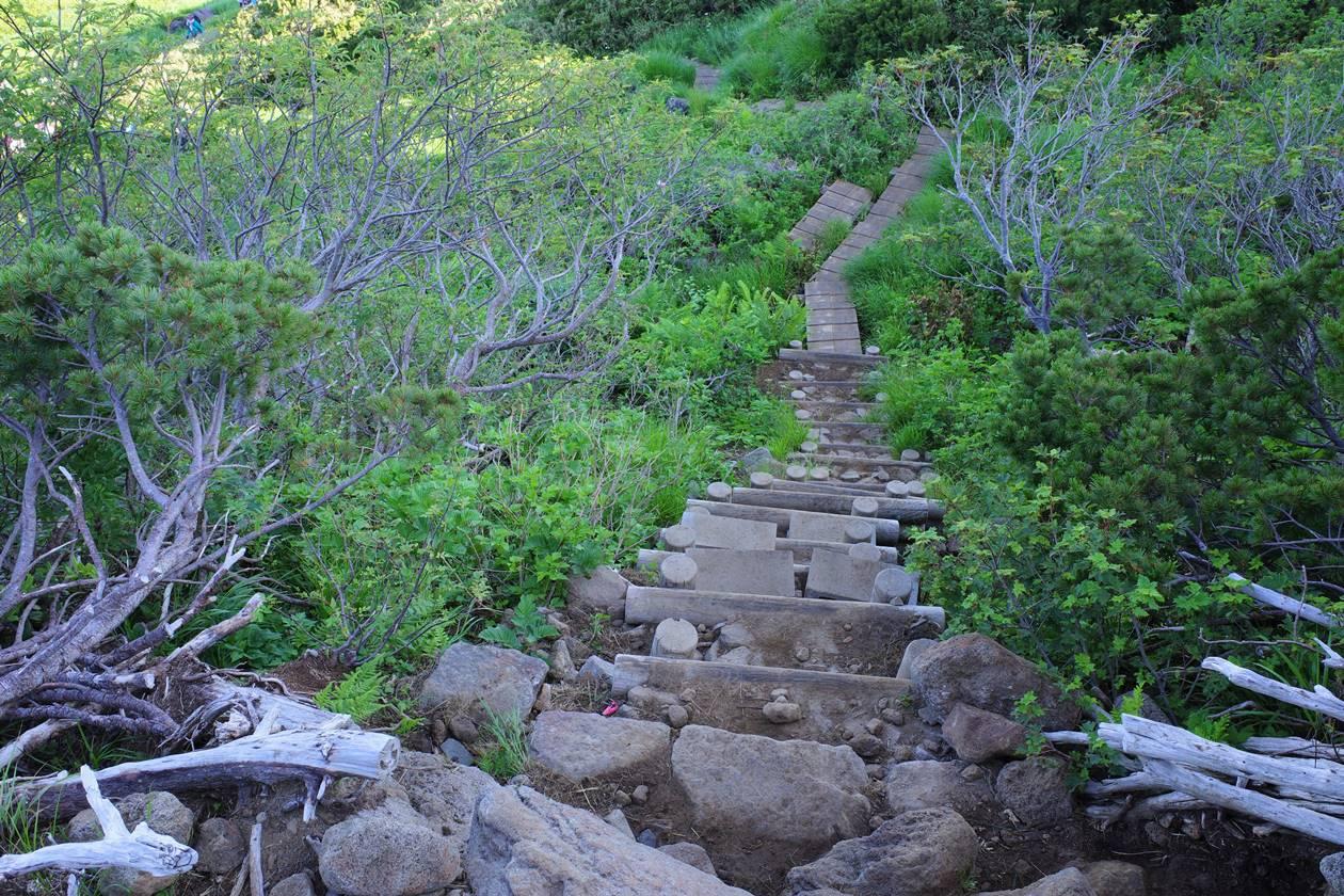 鳥海山の木道路