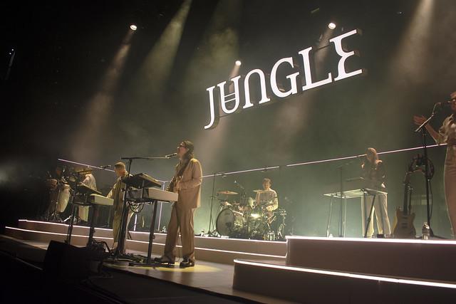Jungle05