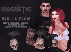 Magnetic - Skull & Crow