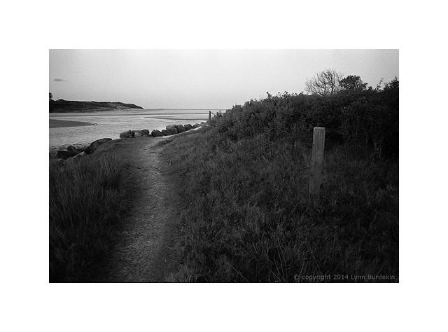 coast path, Sydney 2014  #957 Explored