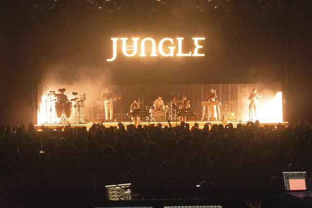 Jungle20
