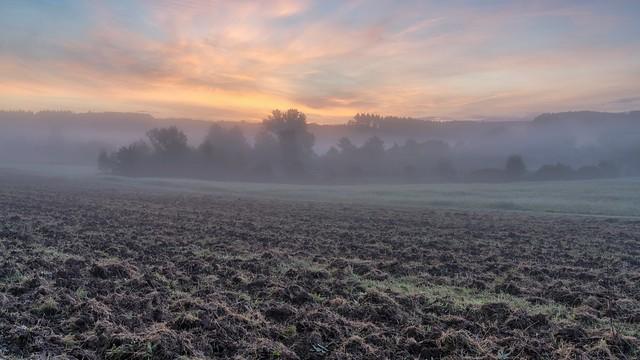 *before sunrise in the fields of the Eifel*