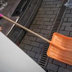 9 октября 2021, Молодежный субботник в Тверской епархии | 9 October 2021, The cleaning day in Tver diocese