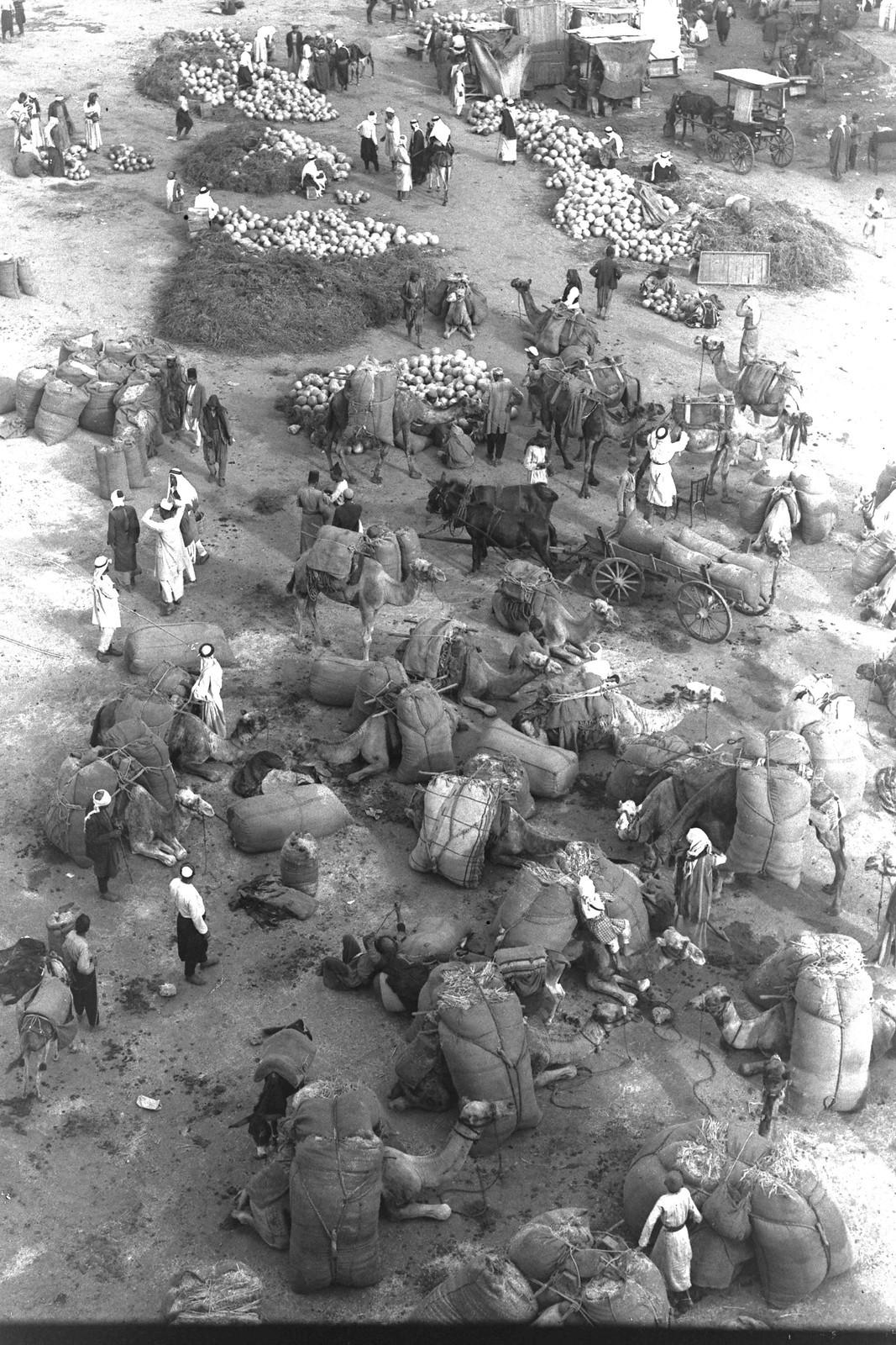 01. 1934. Арабский рынок для торговли животными, овощами и т. д. На границе Тель-Авив-Яффо