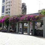 Plaza Italia y Torre Ángela – Córdoba Capital