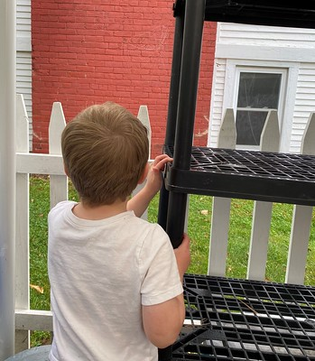 looking at a dew covered spider web
