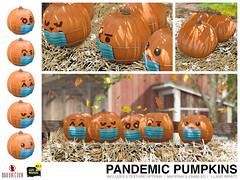 NEW! Pandemic Pumpkins @ Bad Unicorn Mainstore