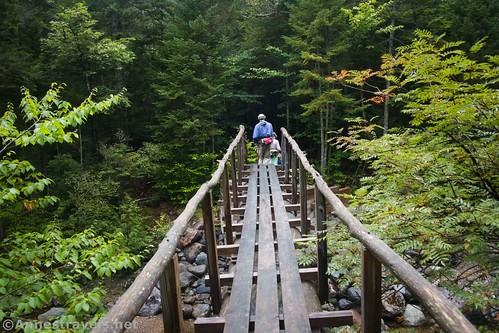 Bridge over Indian Pass Creek, High Pass Wilderness, Adirondack Park, New York