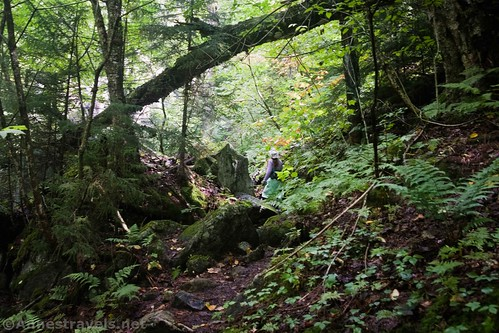 Hiking up toward Indian Pass, High Peaks Wilderness, Adirondack Park, New York
