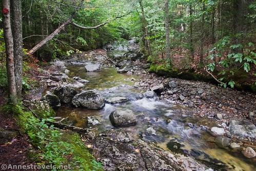 Small waterfalls on Indian Pass Creek, High Peaks Wilderness, Adirondack Park, New York