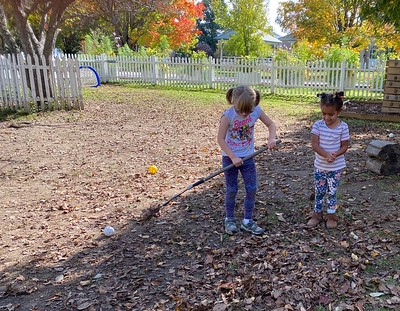 raking leaves for throwing in the air