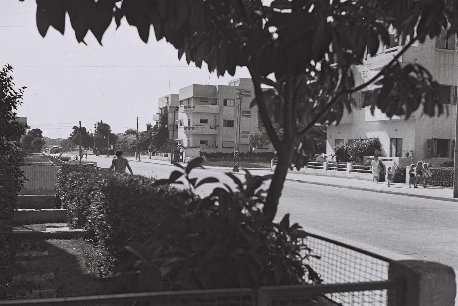 22. 1943. Улица Арлозорова в Тель-Авиве