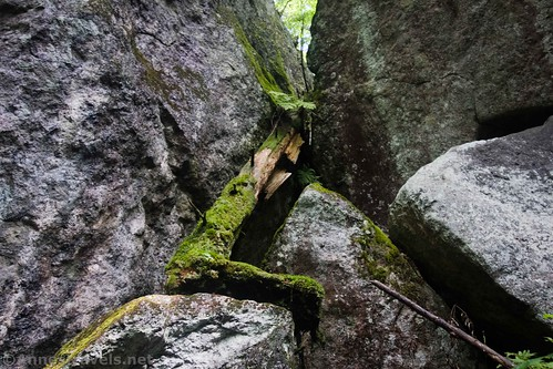 A mossy log between some boulders on the Indian Pass Trail, High Peaks Wilderness, Adirondack Park, New York