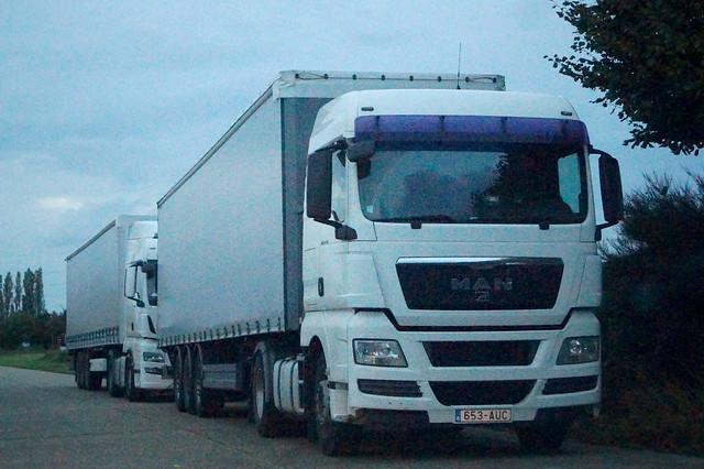 MAN TGX XLX Euro5 18.440 4x2 BLS (2009) - Agri-Men CVBA Beringen, Provincie Limburg, Vlaanderen Gewest, België
